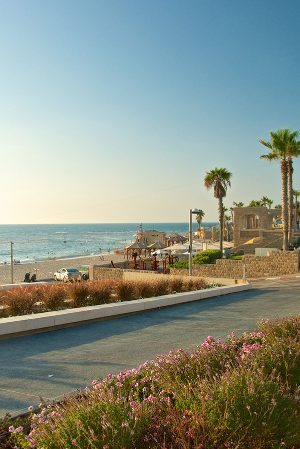 109 listings Bat yam